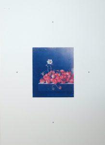 Plogsties – DAN