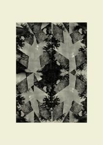 Franziska Holstein, o. T. (H 19-11), 2011, 86 x 61 cm, Handoffsetdruck, ED 10