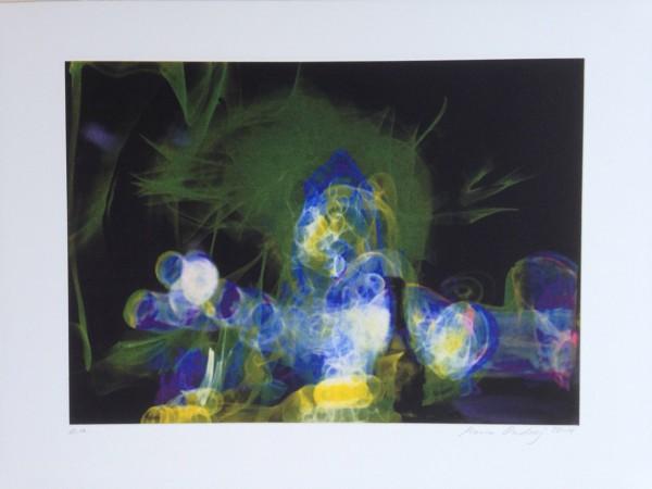Maria Ondrej, Eintagsfliege, 50 x 70cm, 2014, Vierfarb Photogravure, Auflage 6