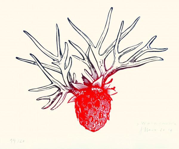 Stephanie Marx, Waldfrucht, 2014, 20x25cm, Linolschnitt