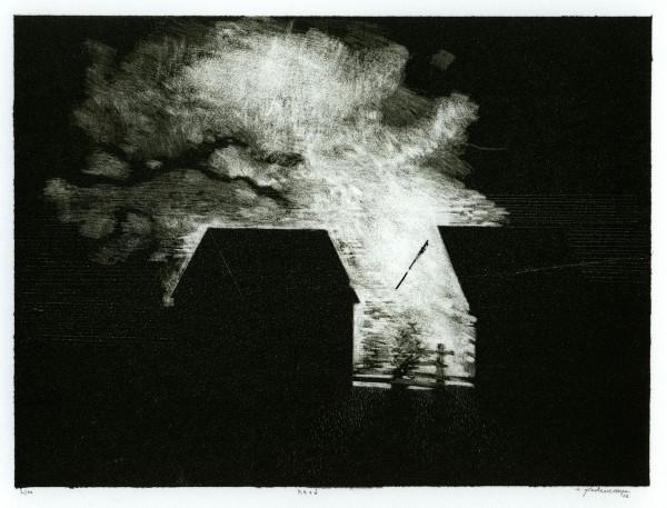 Sebastian Speckmann, Herd,17x22,5cm, Lithographie, 2010
