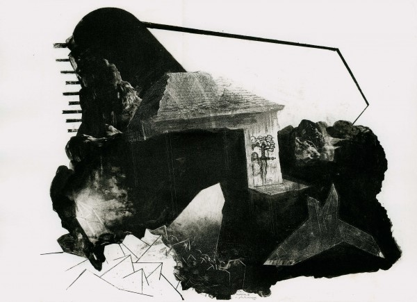 Sebastian Speckmann, mansion 3, 37x50cm, Lithografie, 2010