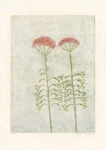 Katrin Stangl, Blumen, 2006, Holzschnitt