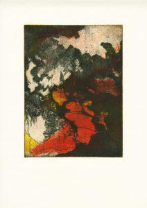 Maps 1, 2013, 53x38,5 cm, Farbradierung