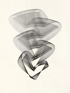 Maribel Mas, Heliconia 1, 2020, Zeichnung